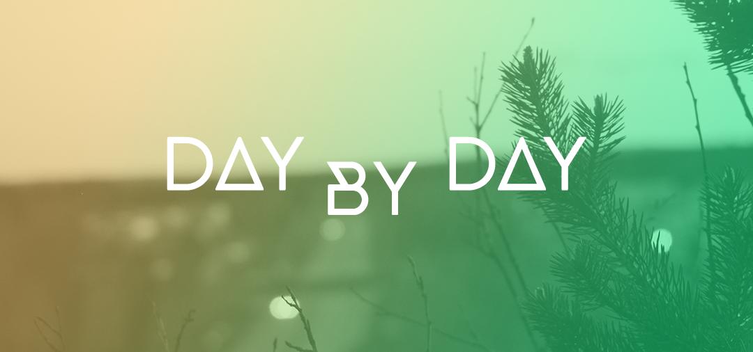 Day by day – Zetterfeldt