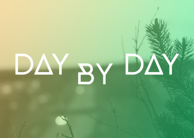 Day by day – Zetterfeldt